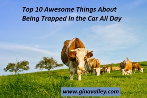Humor Funny Humorous Family Life Love Laugh Laughter Parenting Mom Moms Dad Dads Parenting Child Kid Kids Children Son Sons Daughter Daughters Brother Brothers Sister Sisters Grandparent Grandma Grandpa Grandparents Grandfather Grandmother Parenting Gina Valley Top 10 Awesome Things About Being Trapped In the Car All Day Road Trip