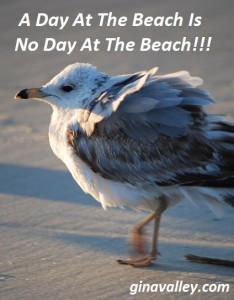 Humor Funny Humorous Family Life Love Laugh Laughter Parenting Mom Moms Dad Dads Parenting Child Kid Kids Children Son Sons Daughter Daughters Brother Brothers Sister Sisters Grandparent Grandma Grandpa Grandparents Grandfather Grandmother Parenting Gina Valley A Day At The Beach Is No Day At The Beach!!!