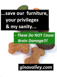 Humor Funny Humorous Family Life Love Laugh Laughter Parenting Mom Moms Dad Dads Parenting Child Kid Kids Children Son Sons Daughter Daughters Brother Brothers Sister Sisters Grandparent Grandma Grandpa Grandparents Grandfather Grandmother Parenting Gina Valley These Do NOT Cause Brain Damage!!! Chores