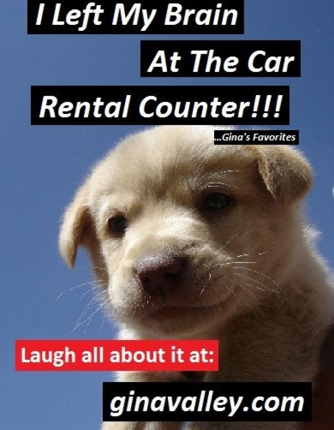 I Left My Brain At The Car Rental Counter!!! …Gina's Favorites